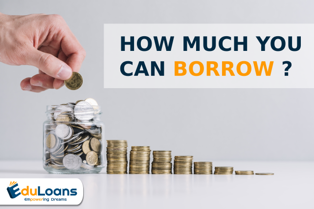 What is the maximum loan provided by the financial institutions?